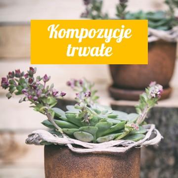 Eleganckie i trwałe dekoracje z roślin doniczkowych, roślin sztucznych, a także suszu  w odpowiednio dobranych naczyniach ceramicznych i szklanych.