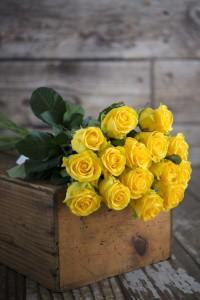 Po prostu róże