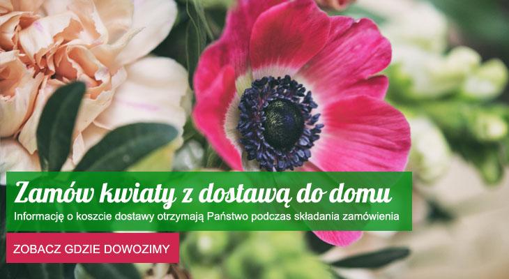 https://kwiatynawarsztacie.pl/wp-content/uploads/2018/01/kwiaty-z-dostawa-do-domu.jpg